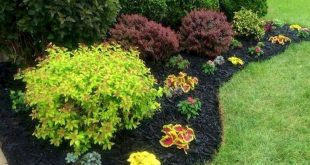 25 Beautiful Front Yard Landscaping Ideas on A Budget