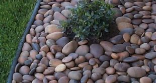 Great Ideas For Backyard Landscaping On A Budget (01
