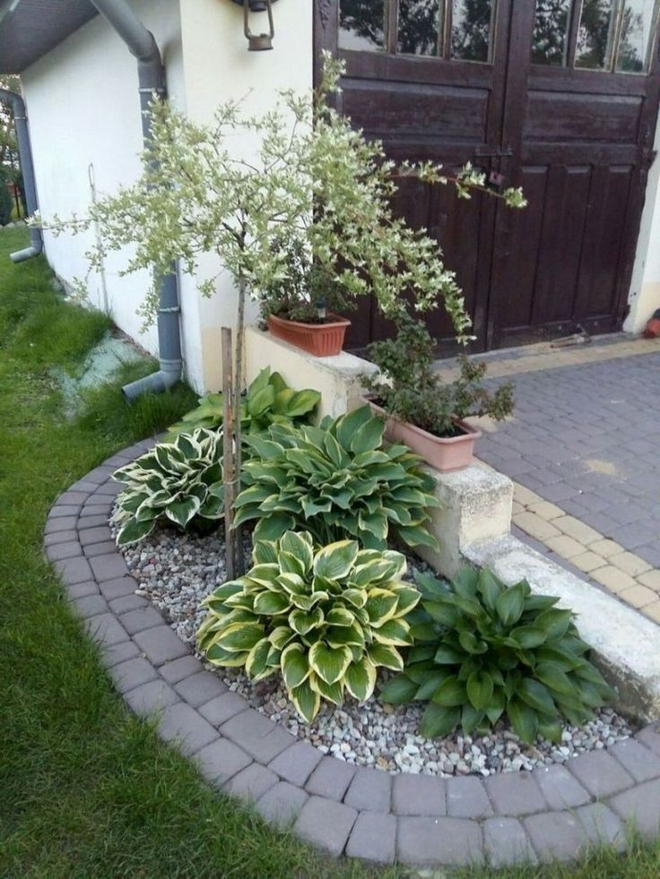50 easy and low maintenance front yard landscaping ideas ...