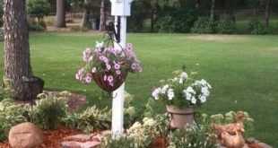 ✔43 simple and beautiful front yard landscaping ideas on a budget 6
