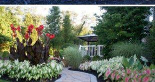 Low Maintenance Landscape Drought Tolerant Sun 32+ Ideas