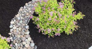 Regenschutz – Erneuerung der Landschaftsgestaltung im Vorgarten – Garden Blog