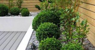 Super Low Maintenance Landscape Front Yard Canada Ideas