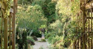 17 Trendy wartungsarme Landschaft Vorgarten North Carolina