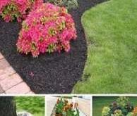19 Trendy Ideas For Landscaping Front Yard Full Sun Fall