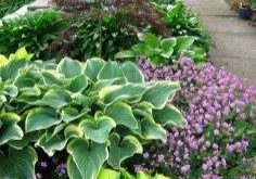 ✔39 simple front yard landscaping ideas on a budget 5
