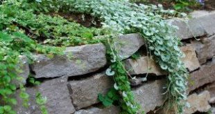 7 Incredible Dry Stack Stone Wall Landscaping Ideas
