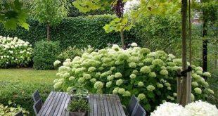 Bei der Gestaltung von Gärten geht es nicht nur darum, Ihren Garten attraktiver...