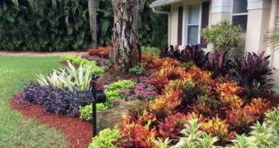 Super landscaping front yard full sun fence ideas