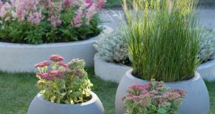 low maintenance landscaping ideas front yard 7942069312 #Gardendecordiyideas - #...
