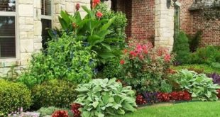 shady front yard landscaping - Google Search